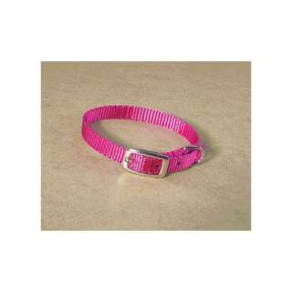 Hamilton Pet Products Single Thick Nylon Deluxe Dog Collar in Hot Pink